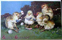 chicks3_12A.jpg